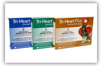 Tri-Heart Plus Product Line